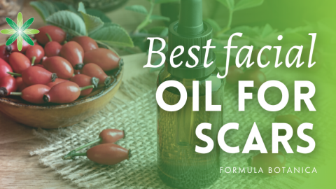 Best Facial Oil for Scars