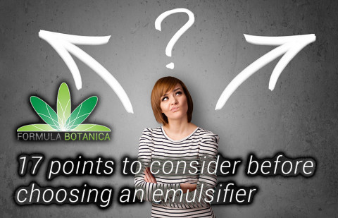 17 Points to Consider Before Choosing an Emulsifier