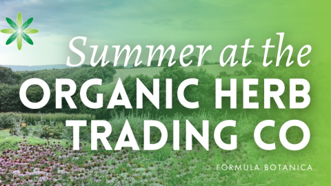 Summer 2015 at the Organic Herb Trading Company