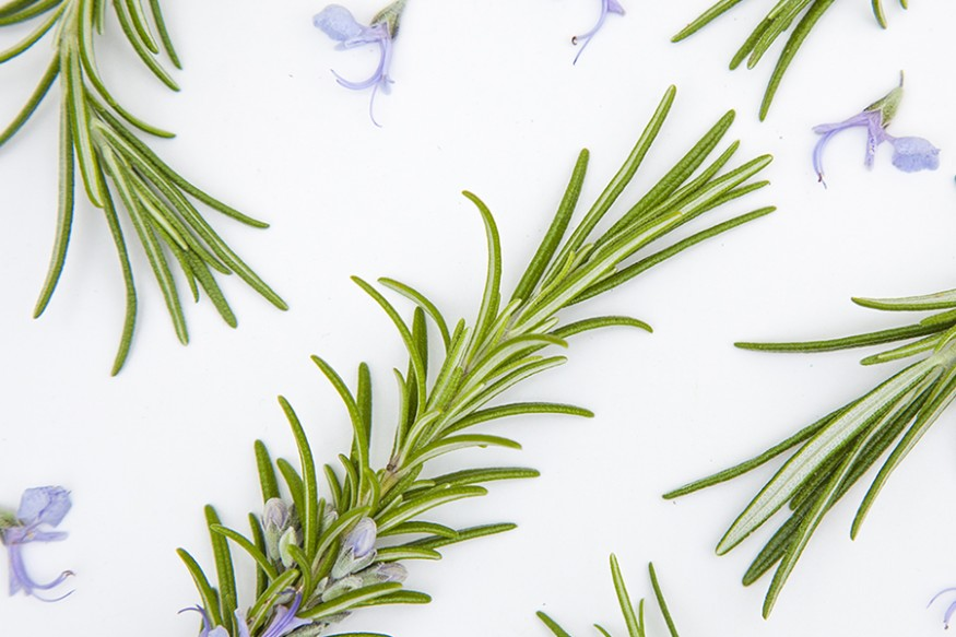 Rosemary Natural Skincare