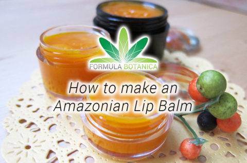 How to make an Amazonian Lip Balm