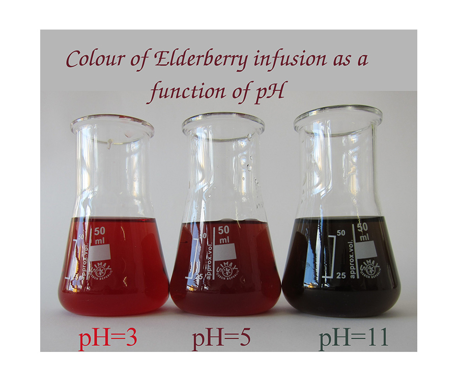 Colour of elderberry infusion as a function of pH