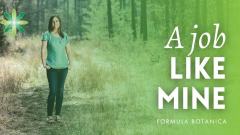 A Job Like Mine: Interview with Lorraine Dallmeier
