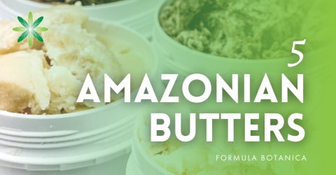 5 Amazonian Butters for Organic Skincare Formulations