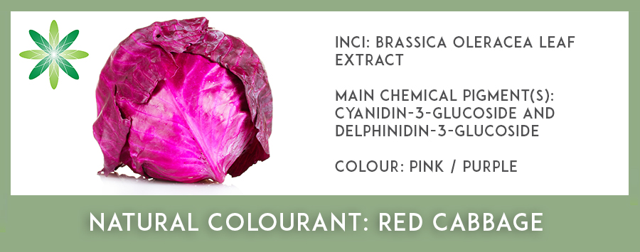 Natural Colourants - Red Cabbage