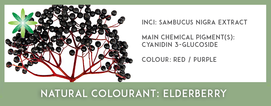 Natural Colourants - Elderberry