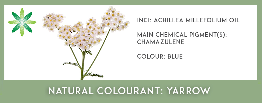 Natural Colourants - Yarrow