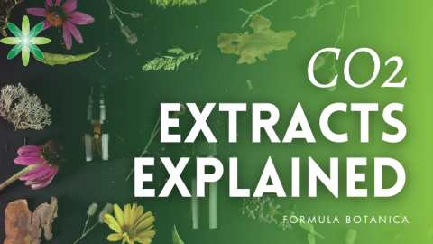 What are CO2 Extracts? Mystery & Methods Explained
