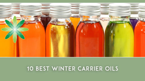 10 Best Winter Carrier Oils