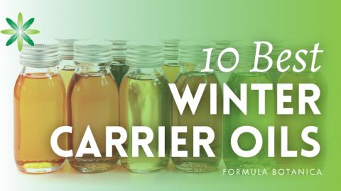 10 Best Winter Carrier Oils for Skin & Hair – Formula Botanica