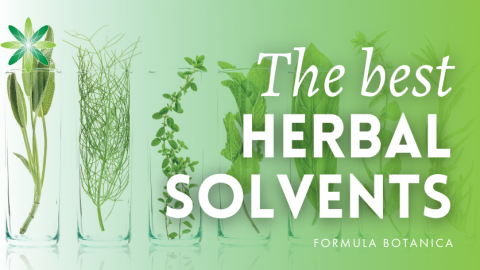 A Guide to Choosing the Best Herbal Solvent