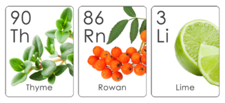 Formula Botanica Botanical Table of Elements