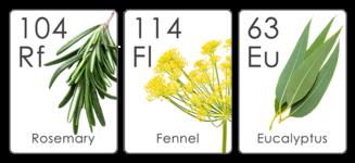 Formula Botanica Botanical Table of Elements