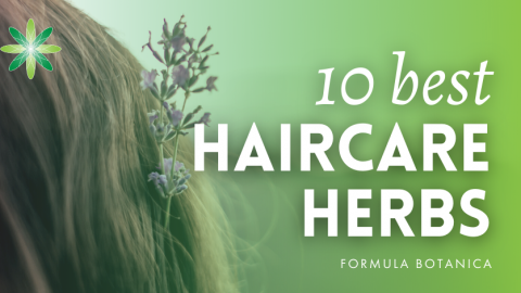 10 of the Best Haircare Herbs