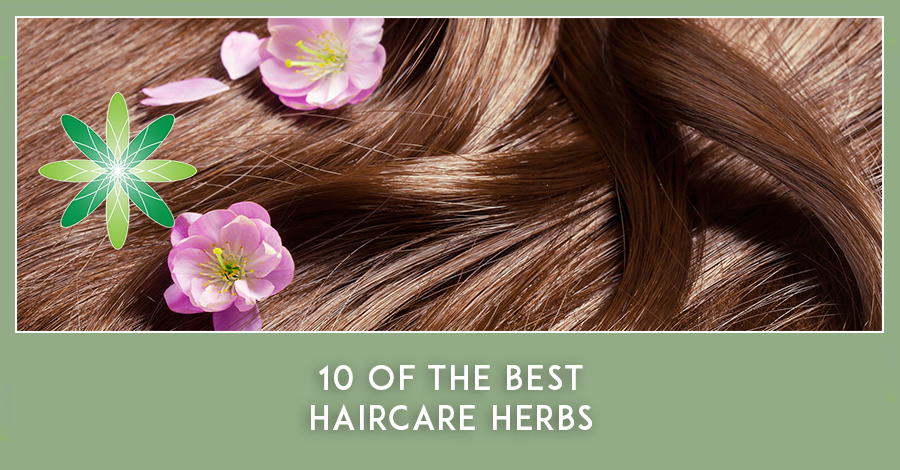 Best Haircare Herbs