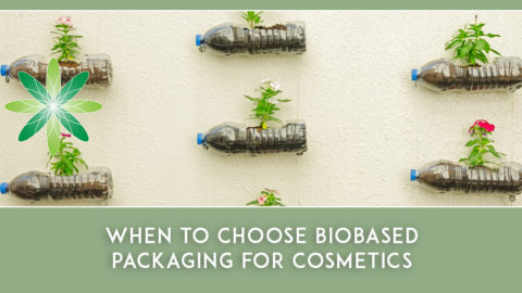 When to choose Biobased Packaging for Cosmetics – an interview with Caroli Buitenhuis