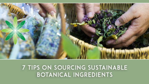 7 Tips on Sourcing Sustainable Botanical Ingredients