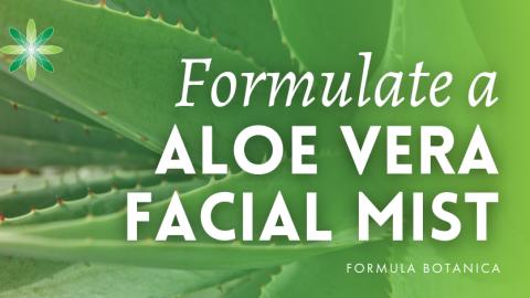 How to Make an Aloe Vera Repairing Mist