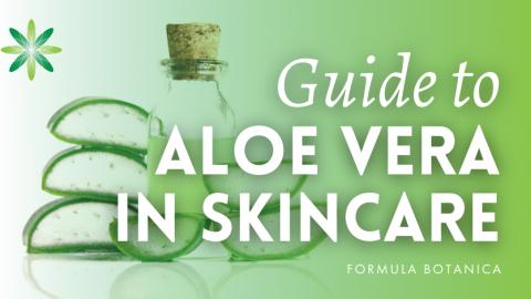 The Formulator's Guide to Aloe Vera in Natural Skincare