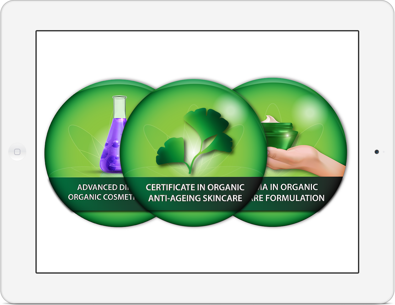 Diploma in Organic Skincare | Natural Skincare Course