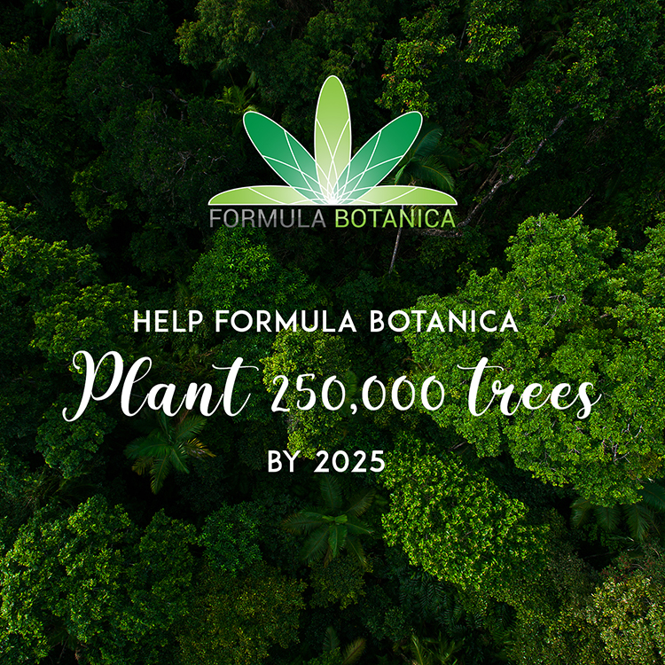 Formula Botanica Forest TreeSisters