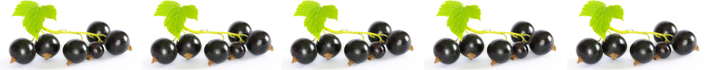 Superfruits in Skincare: Blackcurrant
