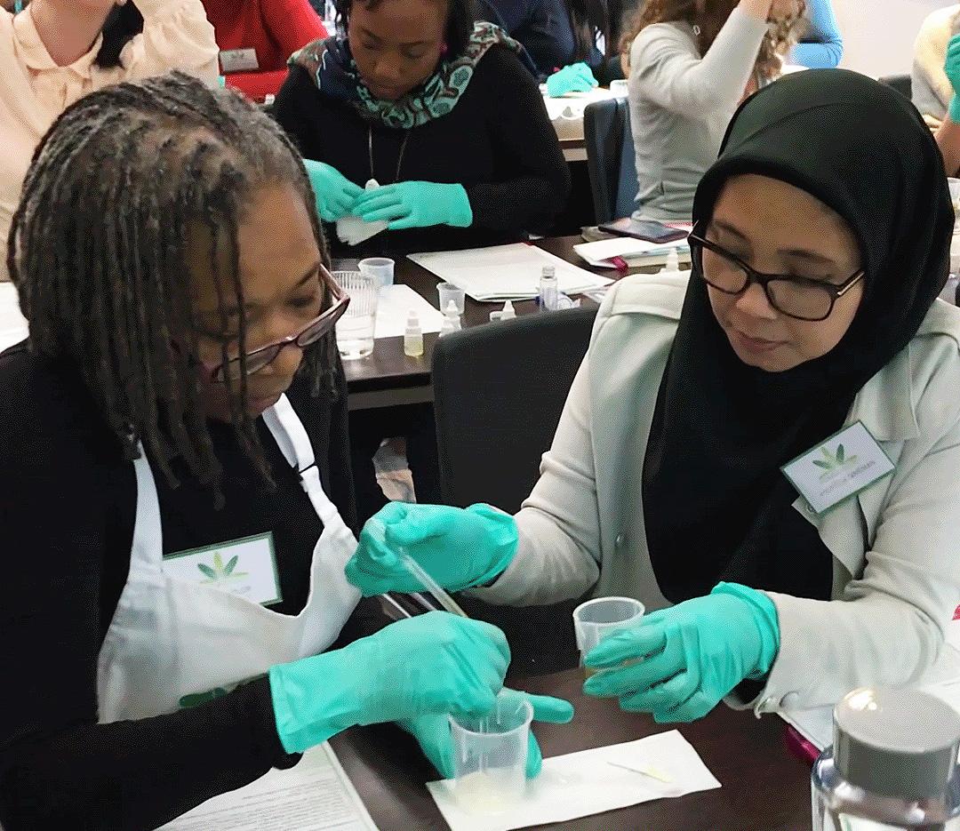 Formula Botanica Skincare Workshop