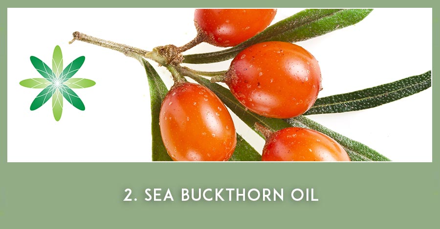 Sea buckthorn oil - Nordic Beauty Ingredients