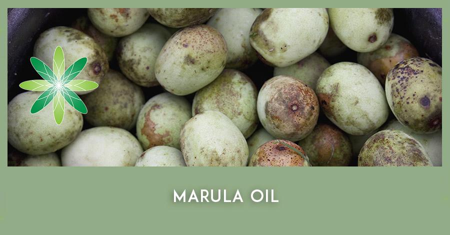 Marula Oil African skincare