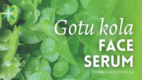 Gotu kola: the botanical ingredient every formulator needs